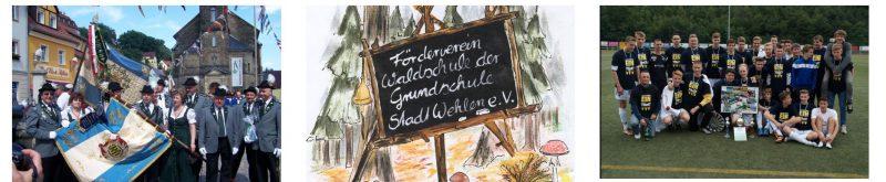Vereine Stadt Wehlen